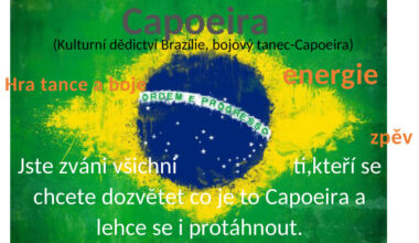 NOVINKY - CAPOEIRA